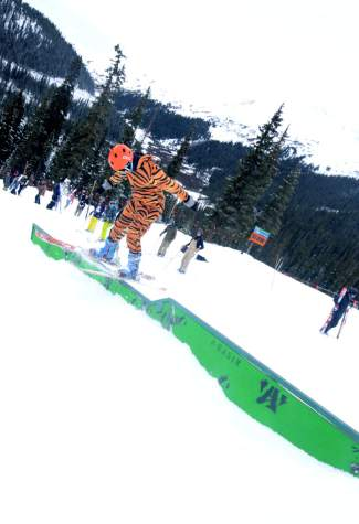 Tigger locks into a 50-50 at the Arapahoe Basin terrain park for Halloween.