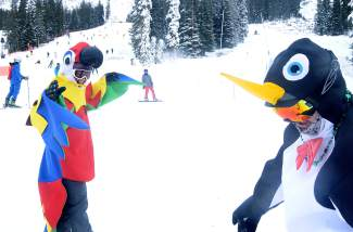 Distant cousins: Toucan Sam and man-sized emperor pengiun at the base of Black Mountain Express at Arapahoe Basin on Halloween.