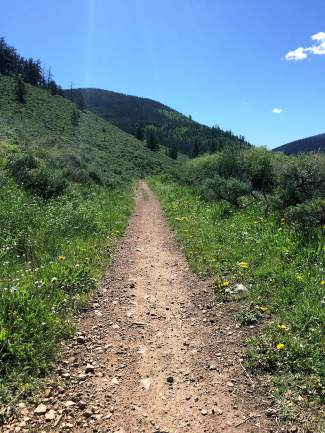 An early stretch of singletrack on the Blair Witch trail north of Breckenridge. The out-and-back trail takes riders 3.3 miles into the woods surrounding Horsehoe Gulch before returning to an abandoned dredge lake.