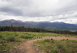 Upper Barney Ford trail in Breckenridge, Colorado. The trail connects with Barney Flow and the Carter Park switchbacks for loop rides into downtown.