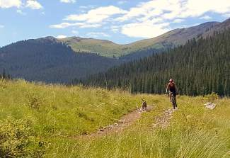 The lower section of Penn Gulch Grind mountain bike race route in Breckenridge, CO.