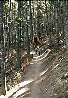 William Moody gets ready to charge singletrack on Prarie View Trail at Mount Helena, Montana, in Aug. 1998. Moody and his stepson, Nick Hawkins, traveled the country mountain biking from the back of a Cessna 187 in the late '90s as Moody was earning his pilot's license.