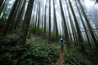 Longtime Summit County local Sarah Rawley navigates the singletrack in the lush, impossibly green forests of her home state, Oregon.