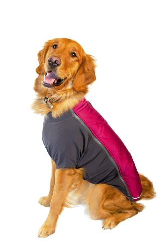 FEATURED: Ruffwear powder hound coat $89.95