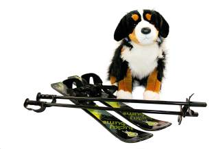 "FEATURED: Bernese Mountain Dog by Douglas $48.95. First skis from ""Lucky Bum"" $49.95. Available in green or pink!"