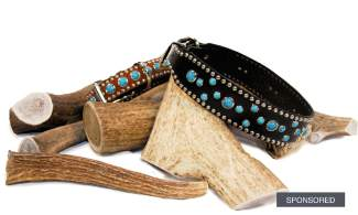 FEATURED: Elk antler chews $6.99-$68.99, Woof Wear leather dog collars $63.99 and $89.99