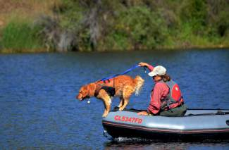Recco, a rescue dog trained to pick up human scent, assists Summit County's Water Rescue Team along with owner Andrea Reller during an operation at Silverthorne's North Pond this week.
