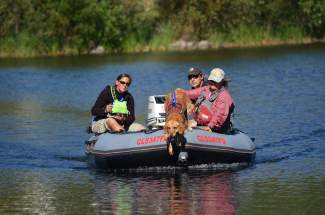 Silverthorne-based trainer Andrea Reller and her dog Recco, a 6-year-old Golden Retreiver, join members of Summit County's Water Rescue Team during passes on North Pond in search of a body earlier this week.