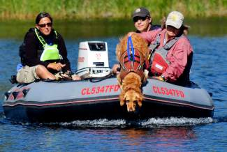 Owner Andrea Reller and her dog Recco, a 6-year-old Golden Retreiver, join members of Summit County's Water Rescue Team during sweeps of North Pond in Silverthorne on Tuesday morning, July 19. Cadaver-detecting canines assist with missing persons cases in forests, under snow from avalanches, and even water.