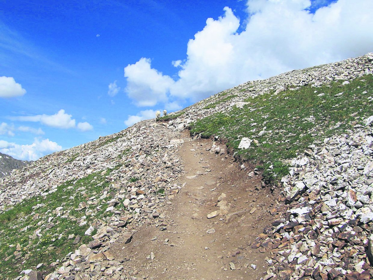 Hiking 14ers is an early bird-type activity. If you plan to summit, rather than just hike up to tree line (ordinarily around 12,000 feet), it is essential that you beat the all-too-common afternoon thunderstorms and the accompanying lightning.