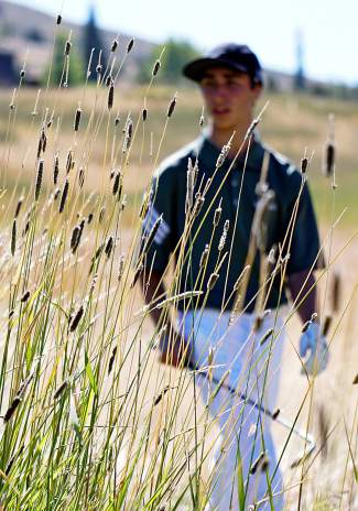 Summit High School's Ethan Moroco searches for his ball in the rough during the Keystone Ranch Invitational Thursday.