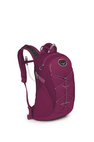 The women's Osprey Skimmer 16 reservoir day pack ($80) in plume purple, a 16-liter backpack made for extended day trips.