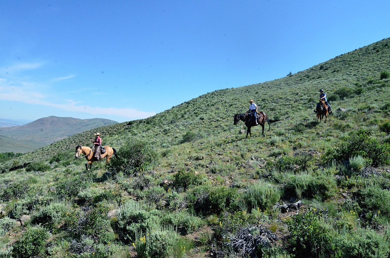 Not all of the terrain is flat at the Rusty Spurr Ranch. Participants in the cattle drive often have to ride out in search of groups of cattle that have been separated from the main herd.
