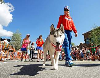 A furry, four-legged participant in the 4th of July Parade walks down Main Street in Breckenridge Monday, July 4, 2016.