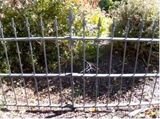 This sample from the remaining fence shows what the missing fence piece looks like.