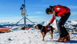 Ski Patroller Andy, with the Breckenridge Ski Resort, and little pup Ayup enjoying a warm morning at the summit of Peak 6.