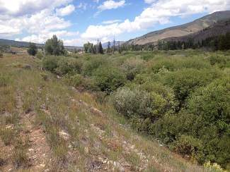 "The Town of Silverthorne and Summit County recently partnered on a purchase of 10 acres in Silverthorne near North Pond Park. The land, which encompasses more than seven acres of wetlands, will be preserved as open space. The photo was taken from the ""upper bench"" looking north over the wetlands."