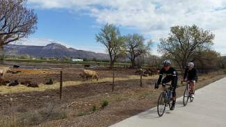 A duo of cyclists on course for the 2015 Palisade Gran Fondo road ride. The event returns for a second year on June 4 with rides through the best routes on the Western Slope.