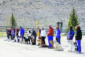 This group of dogs and their owners were taking obedience class earlier this month at the base on Dillon Dam.