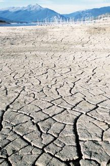 Summit Daily/Brad OdekirkThe drought of 2002 was the worst since 1685, according to paleoclimatologists. Cracked mud at Dillon Reservoir the summer of 2002 told a story as good as tree rings.