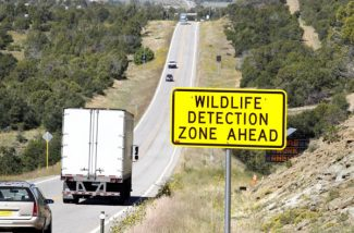 Drivers pass westbound through a wildlife detection zone on U.S. Highway 160 on  Sept. 3, 2010 east of Durango Colo. The Colorado Department of Transportation is up dating the system to reduce false signals.  .(AP Photo/The Durango Herald,Jerry McBride)