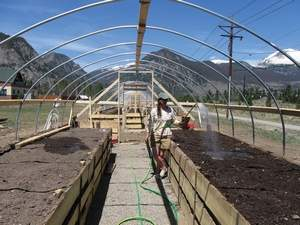 Daily file photo LiveWell Colorado grants helped get some local greenhouse projects off the ground.