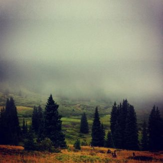 Special to the Daily/Chris StuckeyLow clouds on Boreas Pass obscure all but the closest trees Thursday morning. Clearer, drier weather is on the way, forecasters say.