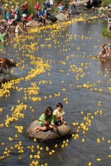 Summit Daily/Mark FoxThe duck race, an annual Breckenridge tradition, is one of many fun events taking place in Breck this weekend.