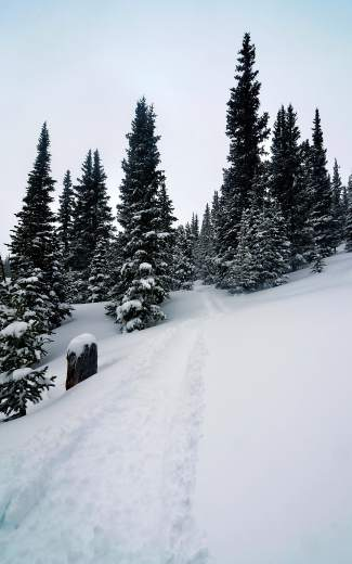 White canvas: On Monday night, the first major storm of March brought 9 inches of fresh snow to Breckenridge. It was enough to fill in the crusty moguls on Wanderlust and across the mountain, just in time for another 5-10 inches of snowfall is expected to do it all over again.