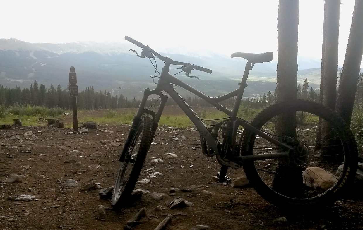Mountain biking, a new distraction for the summer.