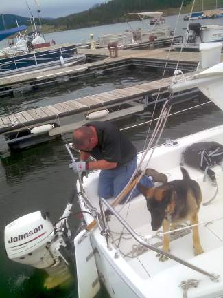 Allie the German shepherd looks on while her master, Bob Evans of the DIllon Marina, preps a boat before heading onto Lake Dillon for a quick sail before the Dillon Open Regatta on Aug. 1.
