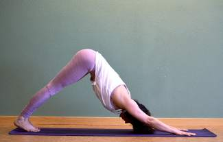 Downward-facing dog for Nordic skiers.