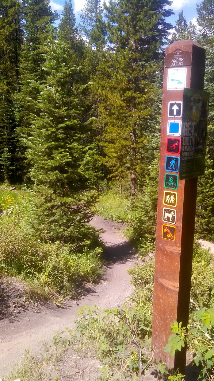 The Aspen Alley trailhead, found near the access gate for Boreas Pass Road.