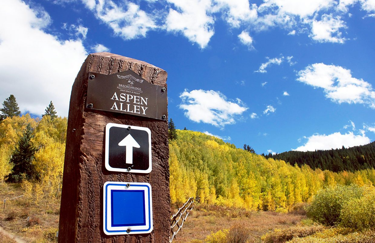 Aspen Alley — Breckenridge, CO