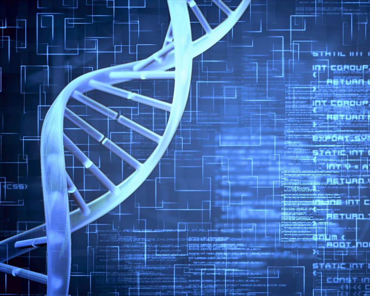 Can any of our genes turn on and off in response to certain conditions?