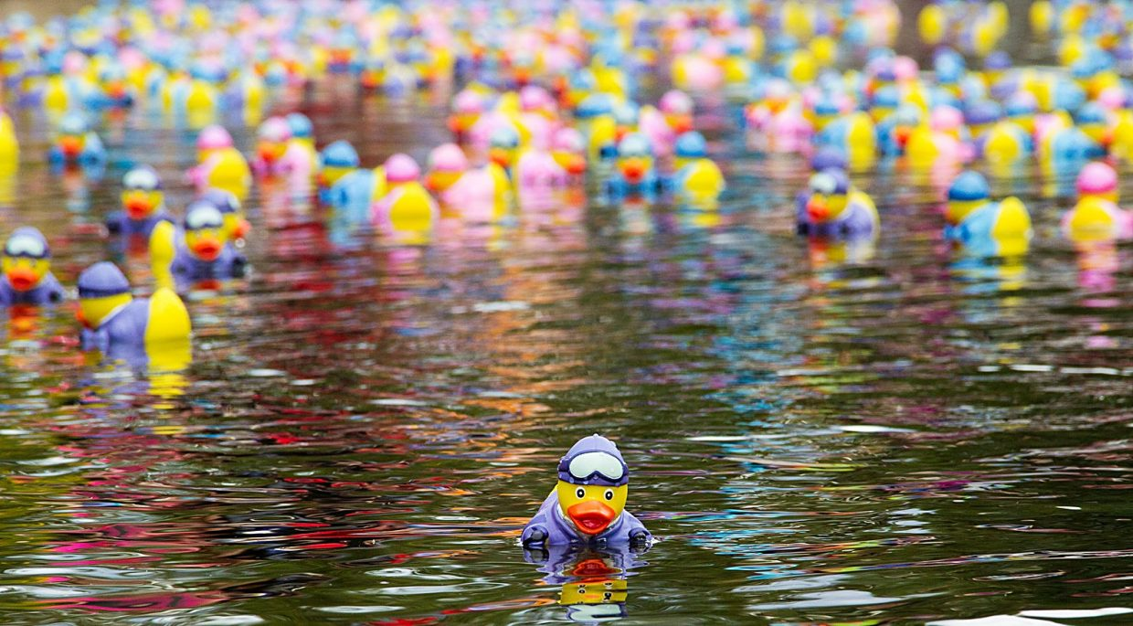 Breckenridge Duck Race Raises More Than 100 000 For