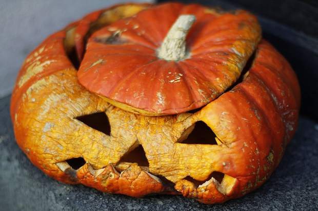 Ask Eartha How to compost a pumpkin after Halloween SummitDaily com