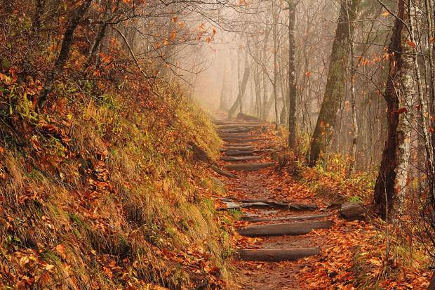 """A foggy afternoon on the Appalachian Trail in the Great Smoky Mountains of Tennessee. After two decades of section hiking, longtime Summit County local Tom """"Rocky"""" Ruetenik finished the Smoky Mountains section of the fabled route to complete the entire 2,180-mile trail."""