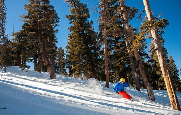 A skier cuts through the trees at Heavenly Mountain Resort. With the winter season nearing, and a pre-season exercise routine can help ensure a successful return to the mountain.