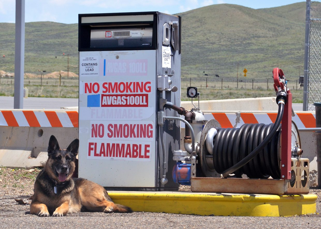 Allie the German shepherd stands guard by the Kremmling Airport fuel pump on a sweltering day a week before the Dillon Airshow. All airshow pilots use the small airport as home base during the show on June 11 over the Dillon Marina.