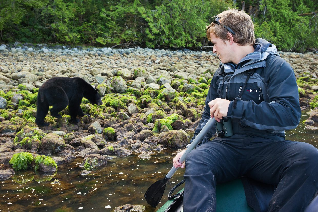 National Geographic photographer watches as a black bear flips rocks to search for crabs on Vancouver Island, British Columbia, the first site of Nat Geo's brand-new digital series,