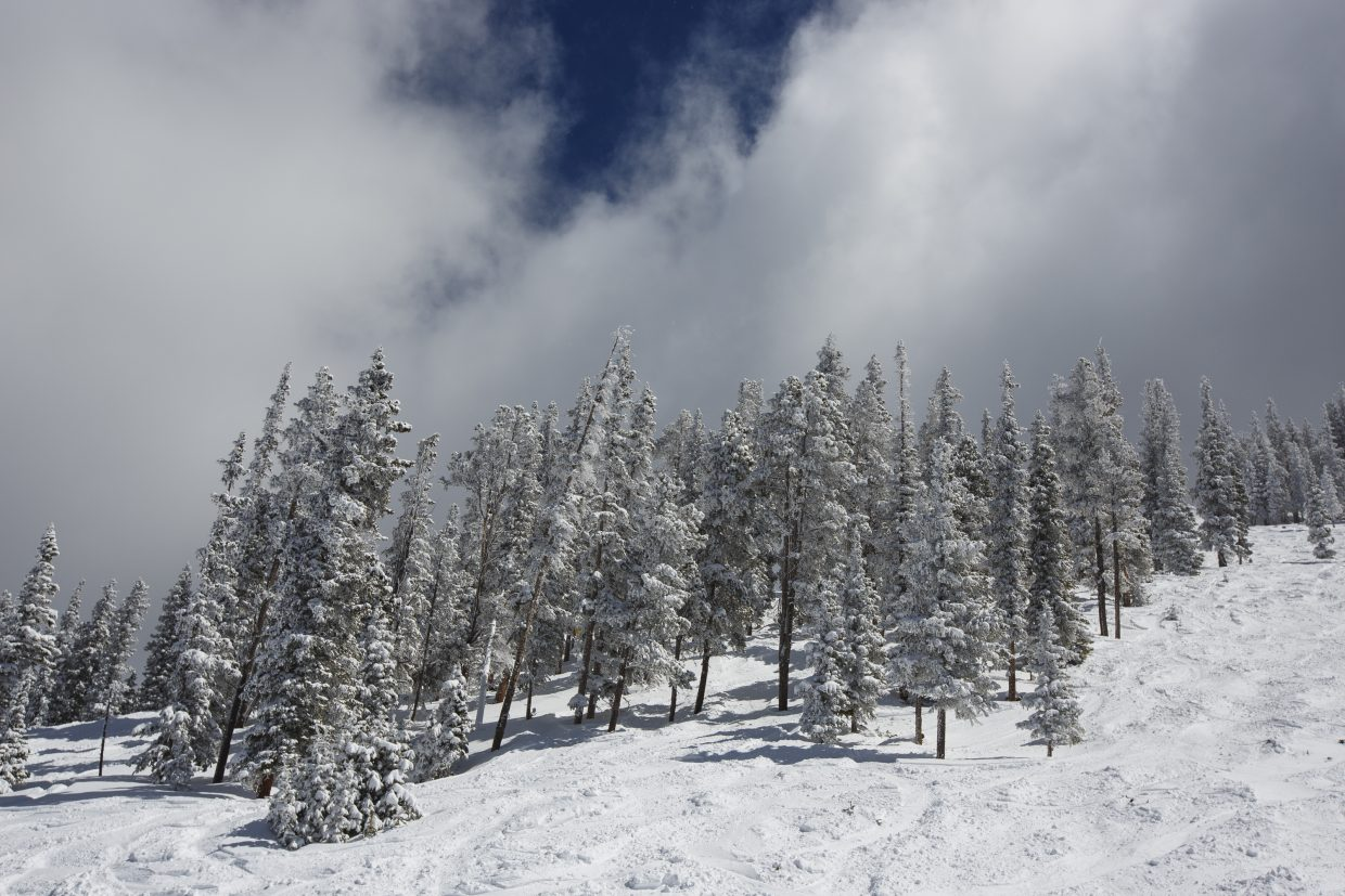 Glades at Keystone Resort's North Peak earlier this spring. Data collected by the Summit Daily News shows that collisions with trees are a common ski-related injury and cause of death due to blunt-force trauma.
