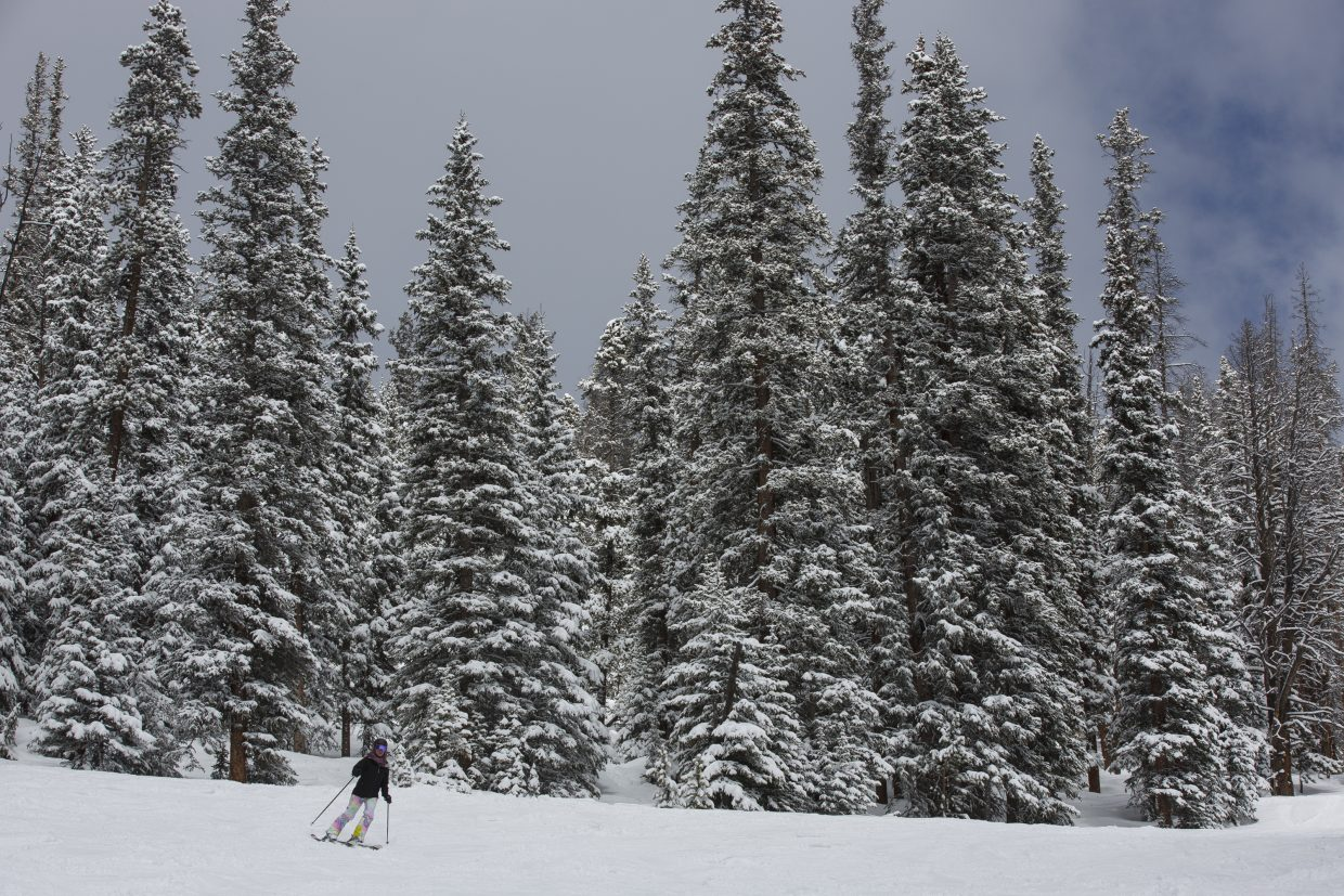 A skier glides through fresh snow on the Mozart run at Keystone Resort in March. Summit is the county with the second-highest rate of fatality, while Pitkin, with its four Aspen Skiing Co. resorts, tops the state.