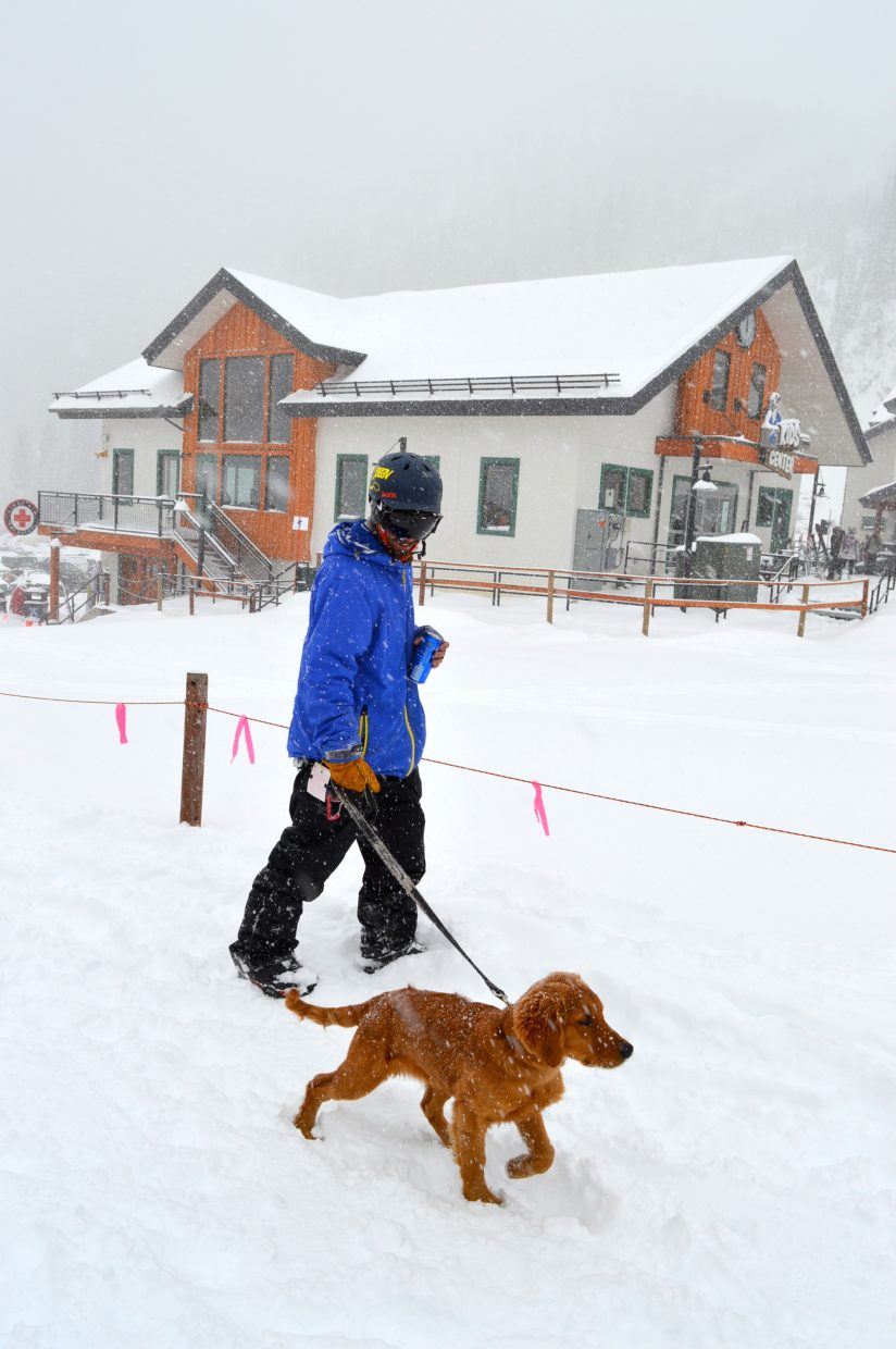 A skier walks his dog at Arapahoe Basin on Thursday, May 18.