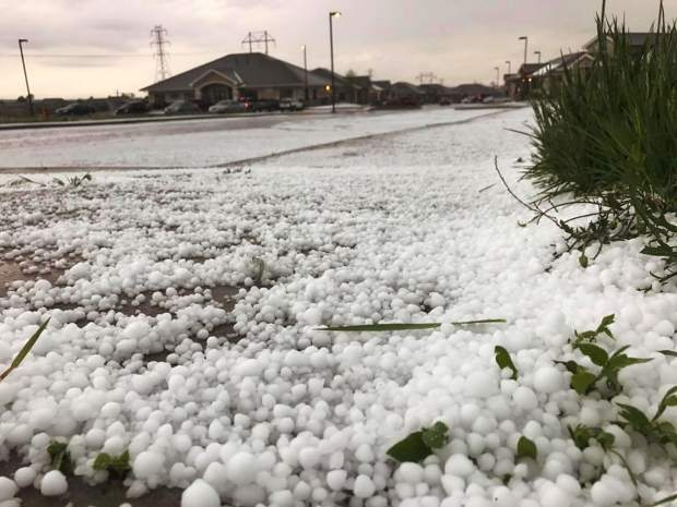 This image, taken just south of U.S. 34 and 83rd Avenue, shows hail accumulating on the ground. Hail and heavy rain on Monday led to areas of flash flooding in Greeley.
