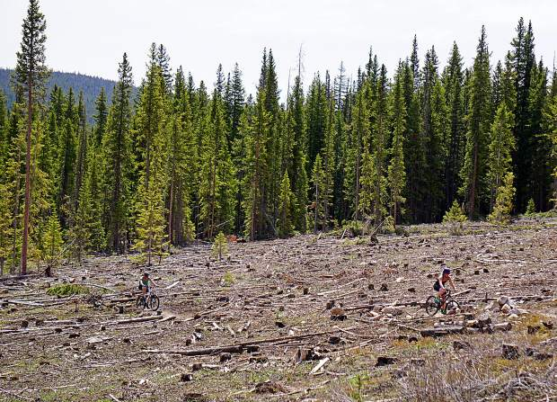 Austyn Williams (left) and Rebecca Spiro ride through a clear-cut meadow on Upper Flume trail, Breckenridge.