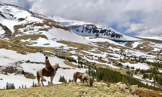Betsy Paiement with Tabasco and Little Prince Charming looking over Hoosier Pass on June 2nd.
