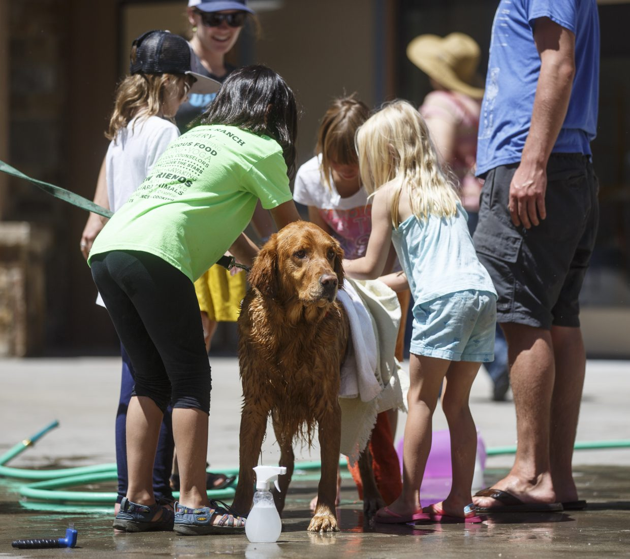 Mountain Top Camp students and employees wash a dog during a fundraiser Wednesday, July 19, at the Main Street Station in Breckenridge.