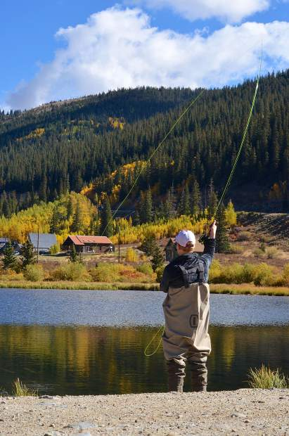Brilliant yellows hungry browns summit county fly for Fly fishing breckenridge