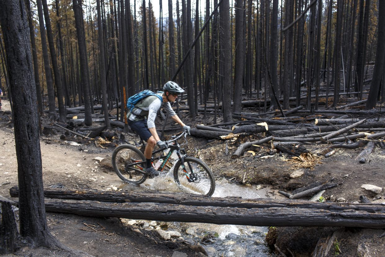 Summit County resident Camden Latimer pedals through a burned forest on Miners Creek Trail Tuesday, July 25, caused by the Peak 2 Fire earlier this month near Breckenridge.